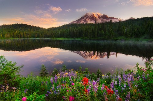 mt-ranier,landscape,lake