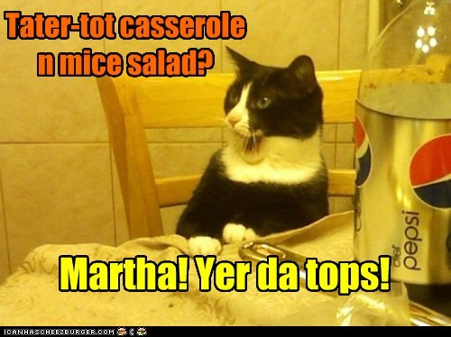 captions,dinner,love,mice,food,Cats,casserole,salad