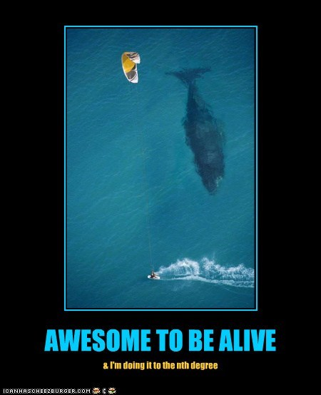 AWESOME TO BE ALIVE