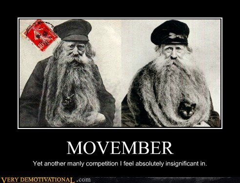 movember awesome beards - 6764952832