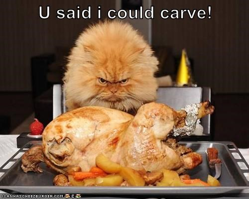 U said i could carve!