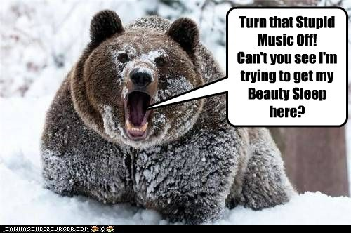 Music,bears,turn it off,hibernate,angry,beauty sleep
