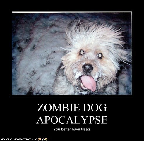 dogs,zombie,snow,frozen,zombie apocalypse,what breed,demotivational
