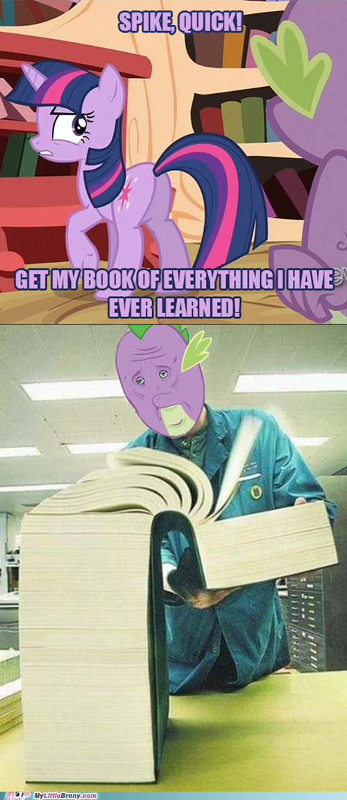 midnight purple,learning,library,book,the dino kid