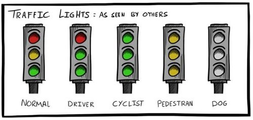 pedestrians,cyclists,drivers,traffic lights