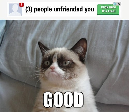 defriended,unfriending,grump cat,unfriended,Grumpy Cat