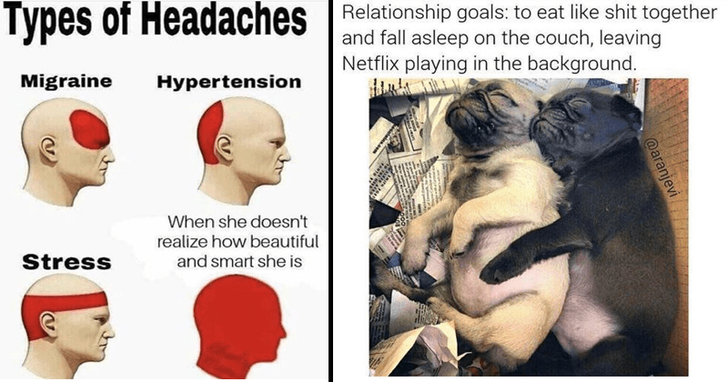 cute and wholesome memes about dating | Person - Types Headaches Migraine Hypertension she doesn't realize beautiful Stress and smart she is | Dog - Relationship goals eat like shit together and fall asleep on couch, leaving Netflix playing background aranjevi alains.cem