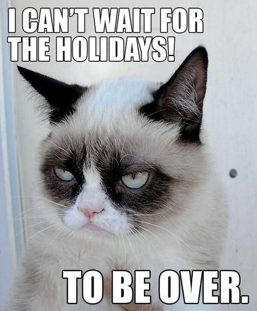 christmas thanksgiving cant-wait Memes grumpy Grumpy Cat tard Cats holidays - 6766751744