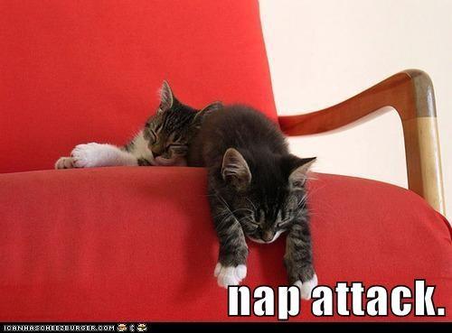 nap attack.