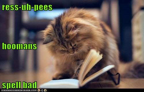 ress-uh-pees hoomans spell bad