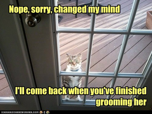 Nope, sorry, changed my mind I'll come back when you've finished grooming her
