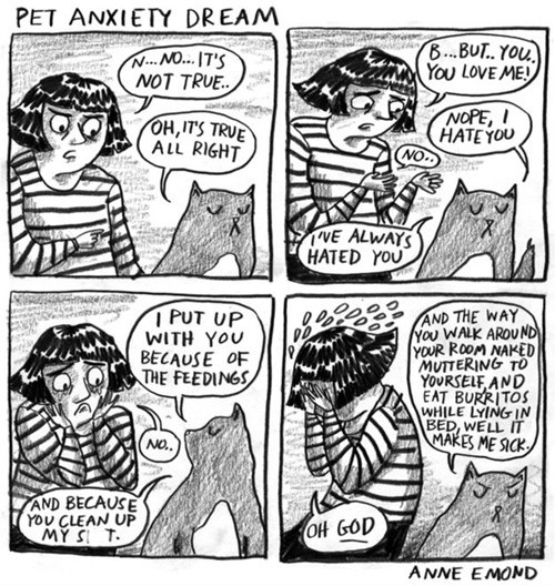 illustrations,pets,comics,dreams,hatred,i hate you,Cats,anxiety