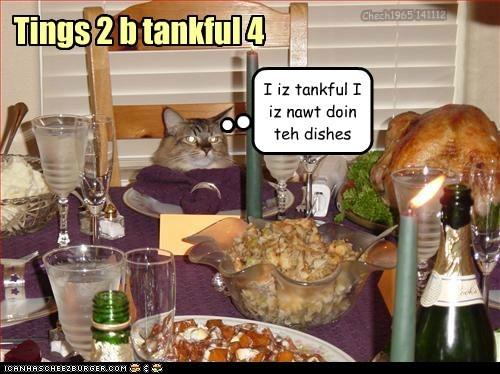 Tings 2 b tankful 4 I iz tankful I iz nawt doin teh dishes Chech1965 141112
