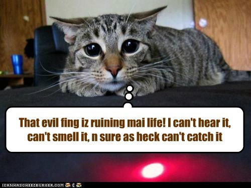 That evil fing iz ruining mai life! I can't hear it, can't smell it, n sure as heck can't catch it