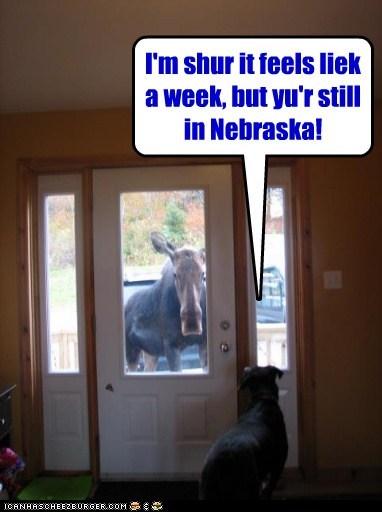 I'm shur it feels liek a week, but yu'r still in Nebraska!