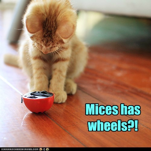 Mices has wheels?!
