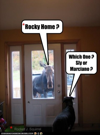 Rocky Home ? Which One ? Sly or Marciano ? * * Rocket J. Squirrel