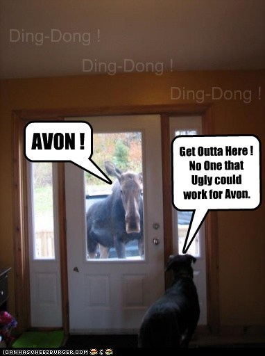 Ding-Dong ! Ding-Dong ! Ding-Dong ! AVON ! Get Outta Here ! No One that Ugly could work for Avon.