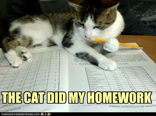 THE CAT DID MY HOMEWORK