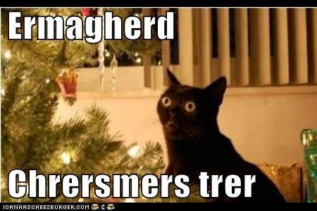 cat Ermahgerd christmas tree - 6769387520