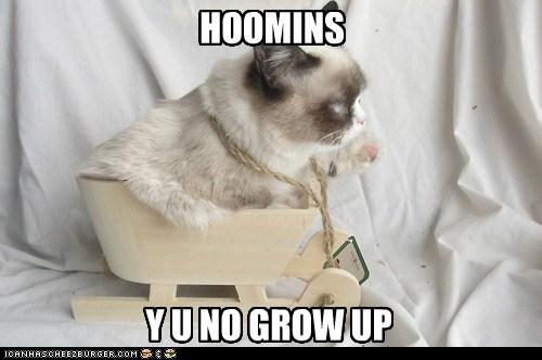 HOOMINS Y U NO GROW UP