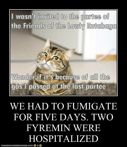 WE HAD TO FUMIGATE FOR FIVE DAYS. TWO FYREMIN WERE HOSPITALIZED