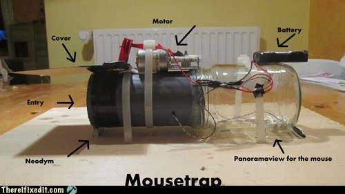 mousetrap perfect mouse trap mice mouse - 6769595392