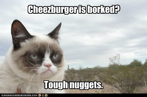 Cheezburger is borked? Tough nuggets.