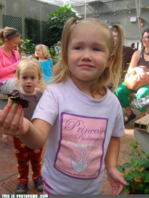 butterfly kids gimme - 6770672896