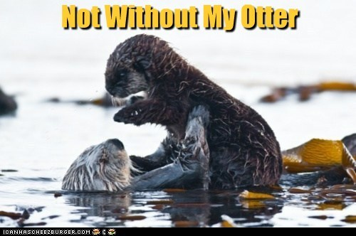 Not Without My Otter