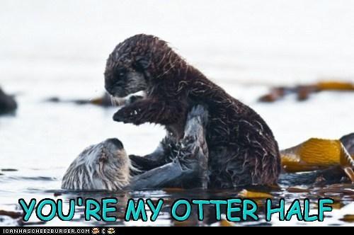 YOU'RE MY OTTER HALF YOU'RE MY OTTER HALF