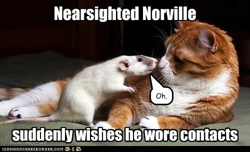 Nearsighted Norville suddenly wishes he wore contacts Oh.