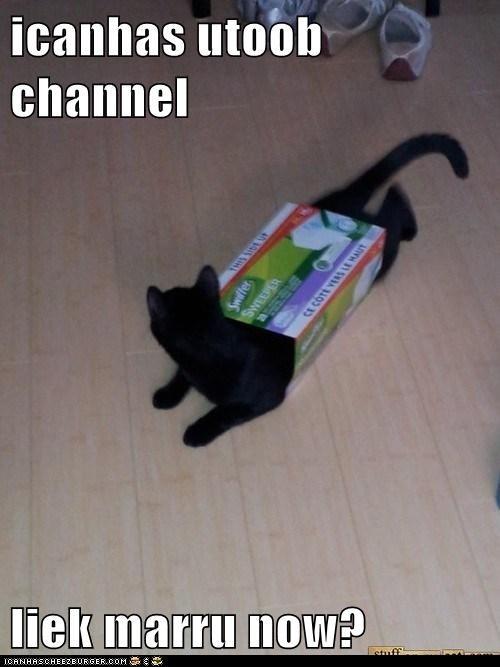 icanhas utoob channel  liek marru now?