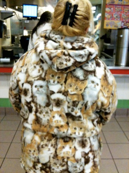 fur coat,Cats