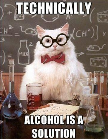 alcohol,chemistry cat,science,solution,puns,Memes,solutions,Cats