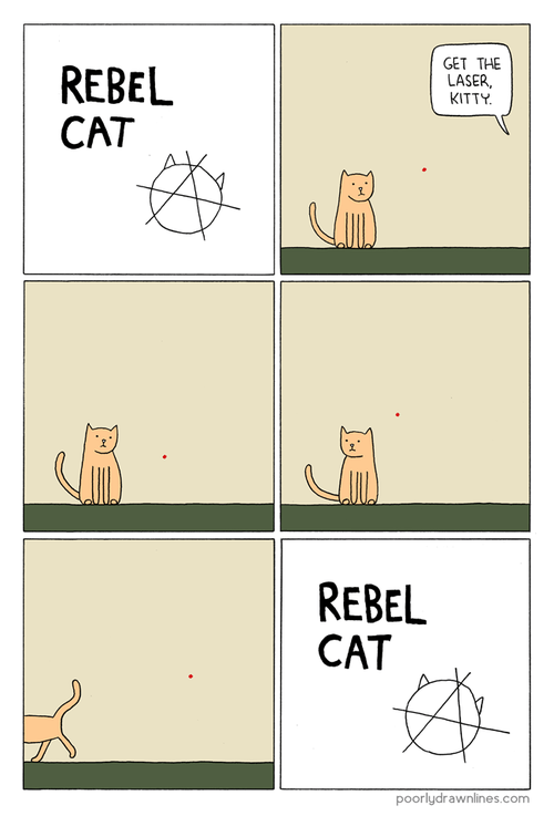 behavior,do not want,laser pointers,rebels,red dot,comics,lasers,Cats