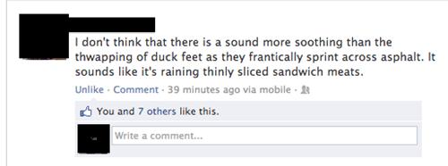 ducks quack sandwich meat - 6772869120