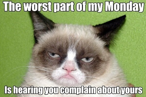 complaining captions mean grumpy mondays Grumpy Cat worst tard Cats - 6773530368