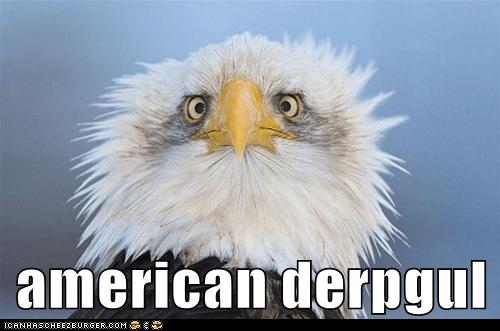 american derpgul