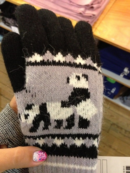 gloves panda cute wait a minute - 6773840640