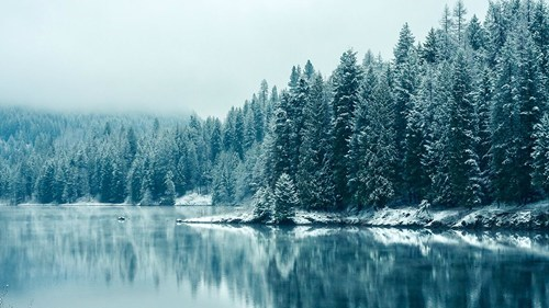 snow,reflection,landscape,winter,frozen,lake
