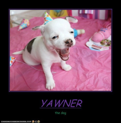 YAWNER the dog