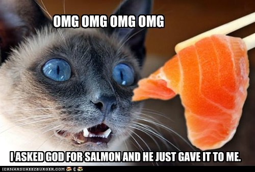 OMG OMG OMG OMG I ASKED GOD FOR SALMON AND HE JUST GAVE IT TO ME.
