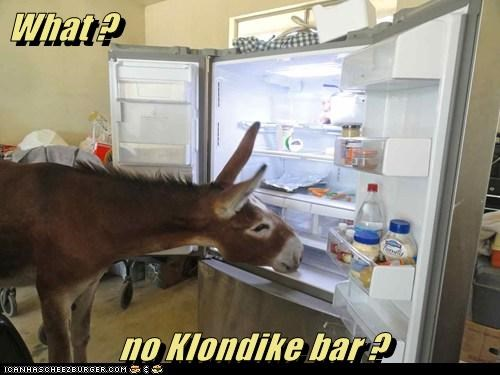 disappointment,donkey,what,klondike bar,refrigerator