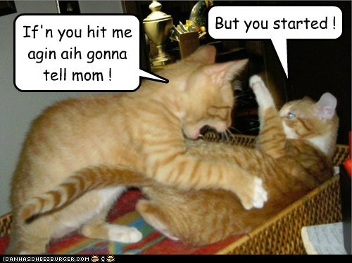 If'n you hit me agin aih gonna tell mom ! But you started !