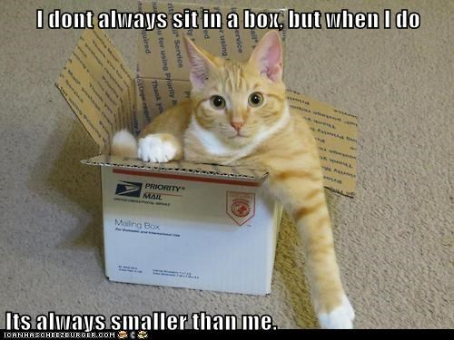 I dont always sit in a box, but when I do  Its always smaller than me.