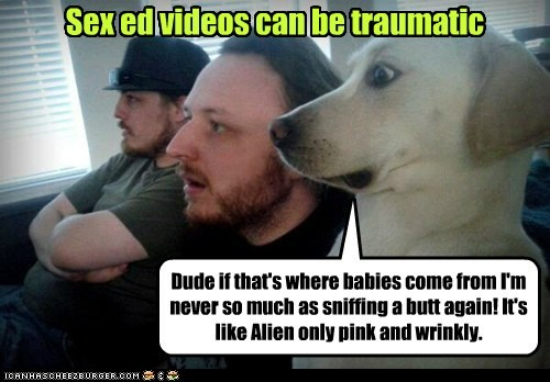 Sex ed videos can be traumatic Dude if that's where babies come from I'm never so much as sniffing a butt again! It's like Alien only pink and wrinkly.