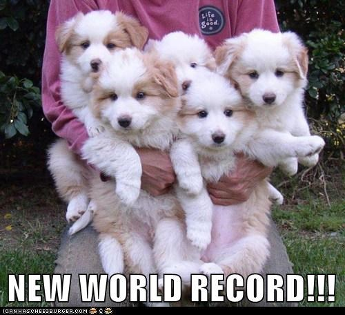 NEW WORLD RECORD!!!