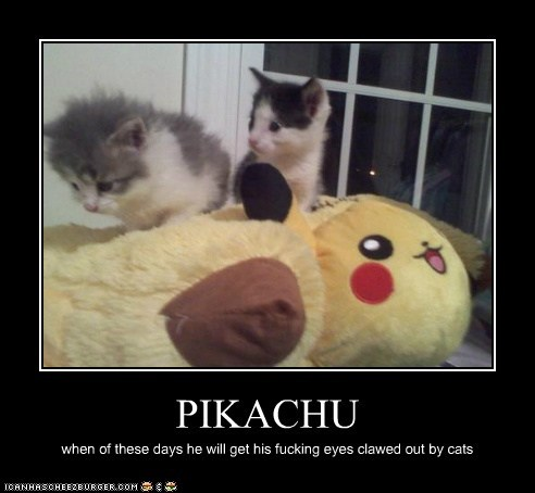 PIKACHU when of these days he will get his fucking eyes clawed out by cats