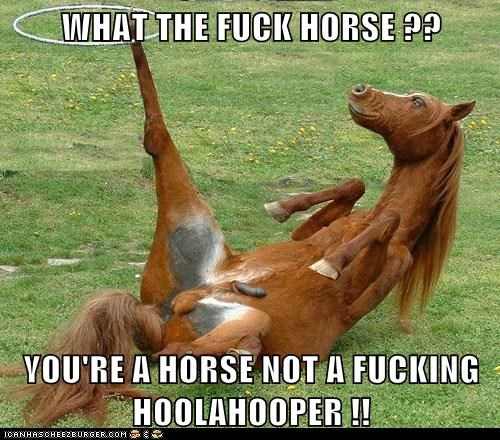 WHAT THE f*ck HORSE ??  YOU'RE A HORSE NOT A FUCKING HOOLAHOOPER !!